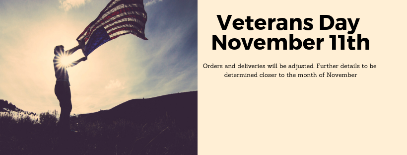Veterans Day Banner for Holiday Schedule