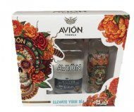 Avion Silver W/2 DDLM Glasses